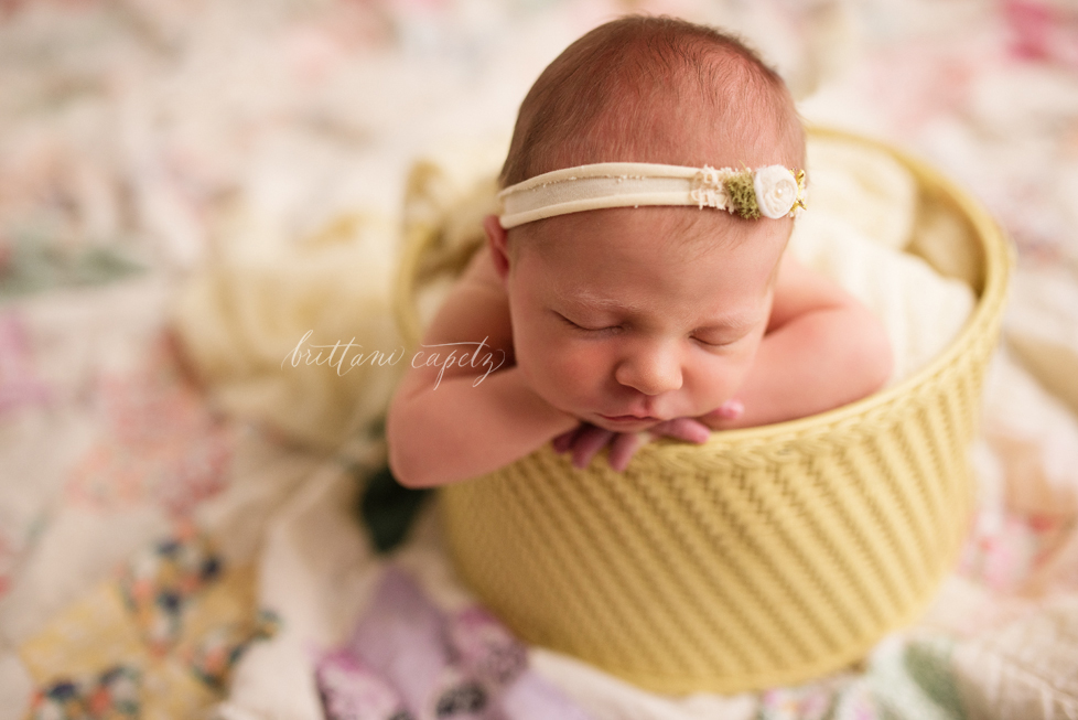 Maple Grove Baby Photographer