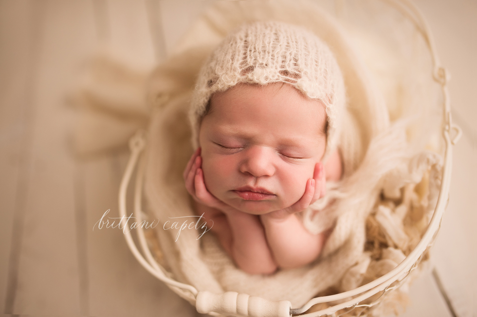 Eagan Baby Photographer