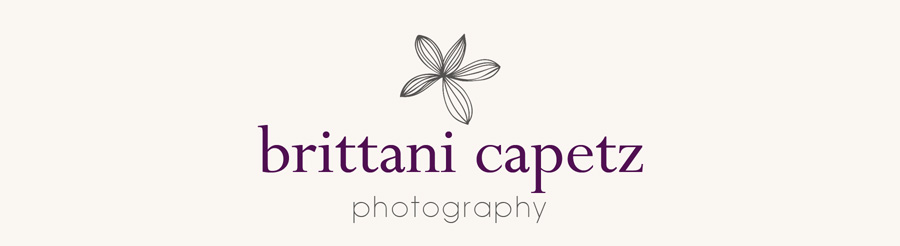 Brittani Capetz Photography | Minneapolis Newborn Photographer logo